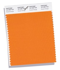 getex-erp-tendencias-color-russet-orange-naranja-rojizo-otoño-invierno-2018-2019-pantone-6