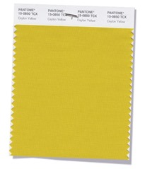 getex-software-tendencias-color-ceylon-yellow-otoño-invierno-2018-2019-pantone-4